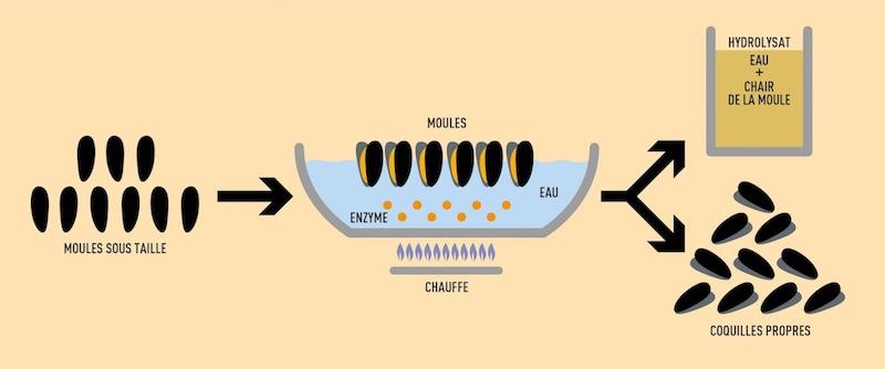 La Cancalaise - Schema Hydrolisat V2